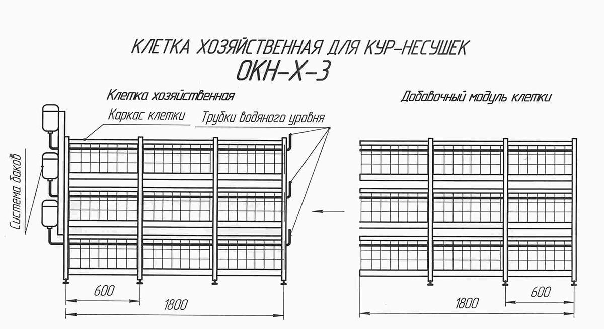 Схема клетки для разведения кур бройлеров