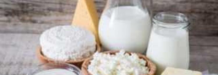 Мичурино молоко официальный сайт