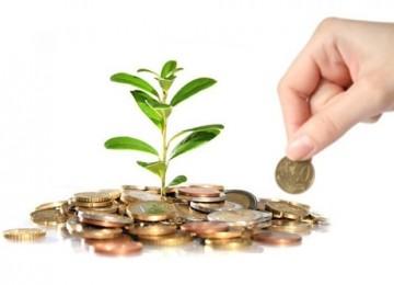 Субсидия для ИП на развитие бизнеса: как получить и что для этого нужно
