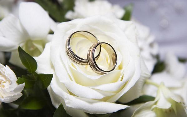 Бизнес по организации свадеб